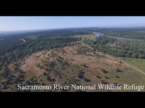 Sacramento River National Wildlife Refuge
