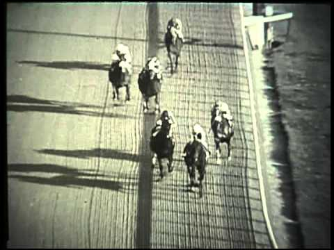 Kelso - 1962 Jockey Club Gold Cup