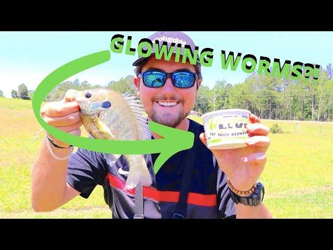 Using NEON Green GLOW Worms As BAIT?! *Surprising*