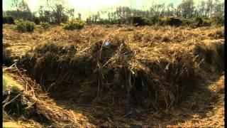 Winchester's Morn Hill camp on BBC 6 O'clock News