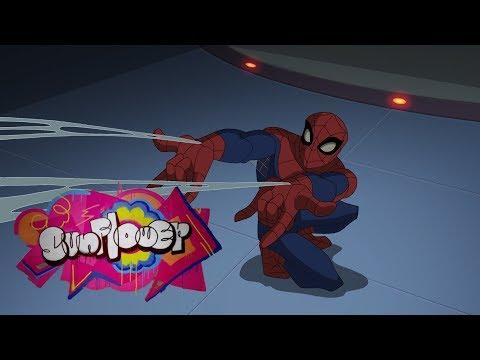 Sunflower-The Spectacular Spider-Man