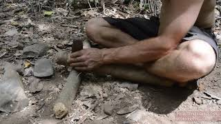 How to build a house, do primitive hunting tools?  Part 29