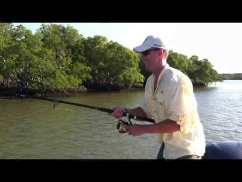 Tarpon Fishing In The Ten Thousand Islands Marco Island