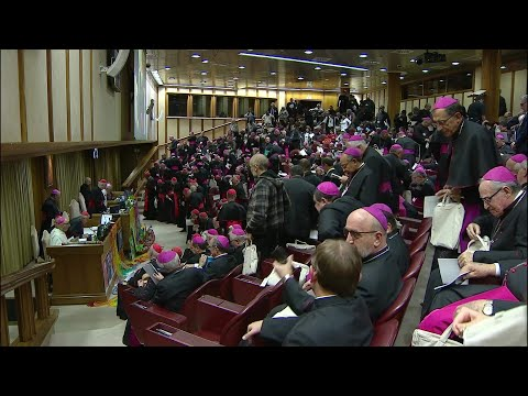 New Ecclesial Conference of Amazon Region, to implement Synod proposals