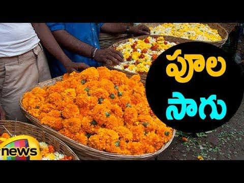 Flower Farmers Facing Problems, Flowers Price Came To Ground | Mango News Telugu
