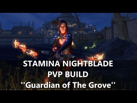 Stamina Nightblade ''Guardian of The Grove'' PvP build [Elsweyr 2019