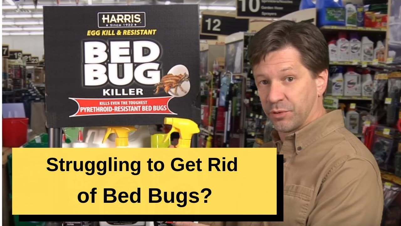 bed bug killers from pf harris, premium black line for resistant