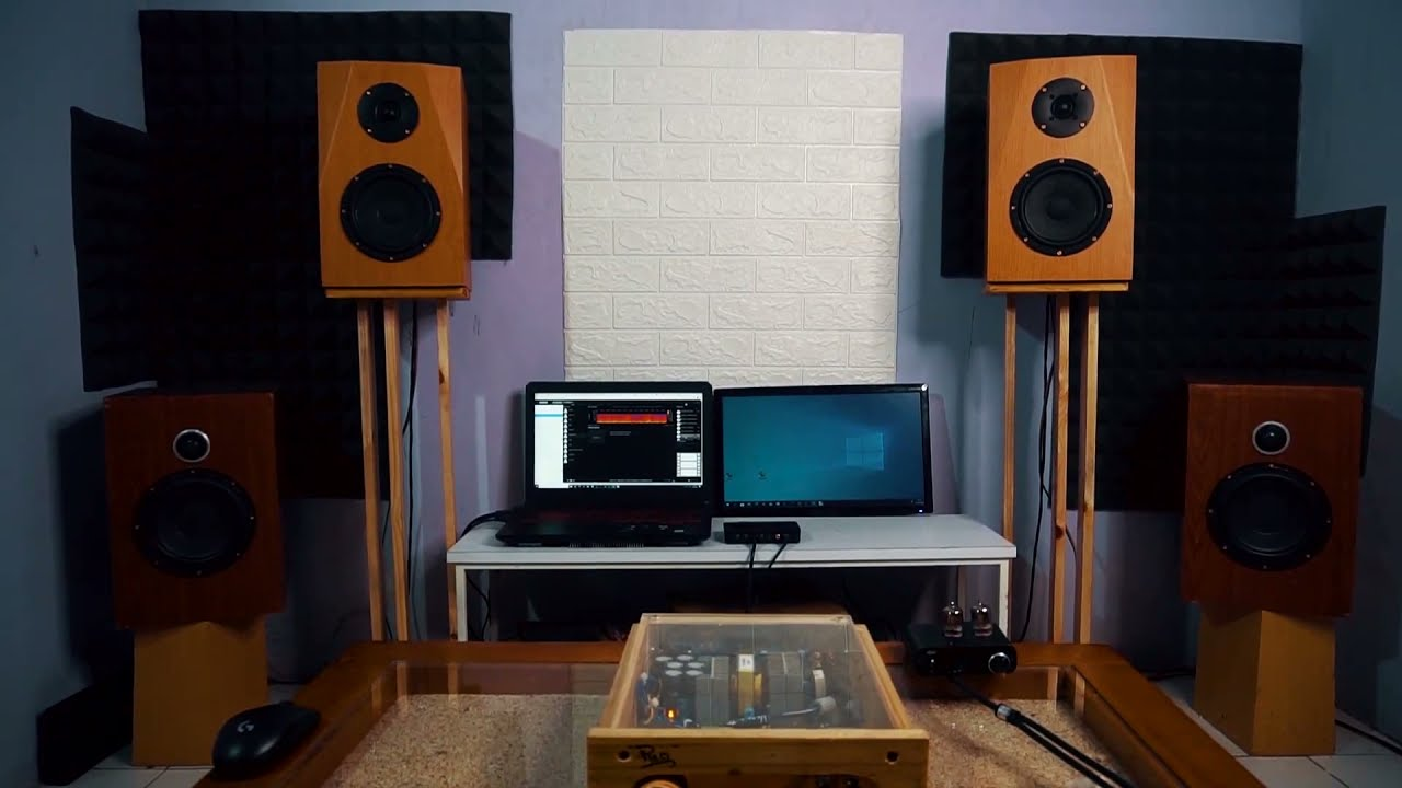 HiFi Discrete Class-D Amplifier UcD Pleci Hear Test2