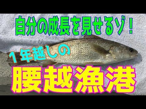 釣り動画ロマンを求めて 148釣目(腰越漁港)
