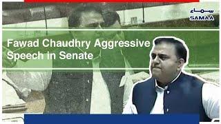 Fawad Chaudhry Aggressive Speech in Senate | SAMAA TV | 14 Nov , 2018