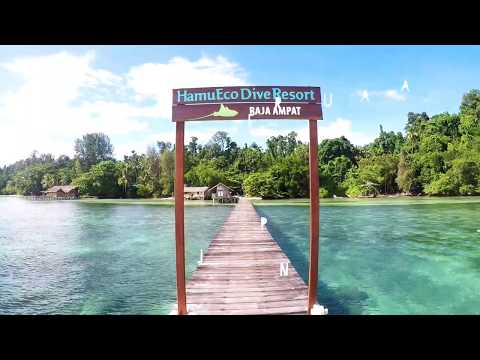 HamuEco Dive Resort Raja Ampat Indonesia - Travel Journal of Satya Winnie
