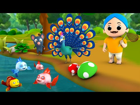 The Peacock & Golden Fish 3D Animated Hindi Moral Stories for Kids मोर और सोना मछली कहानी Tales