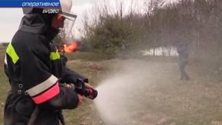 Крымские спасатели ликвидируют лесной пожар
