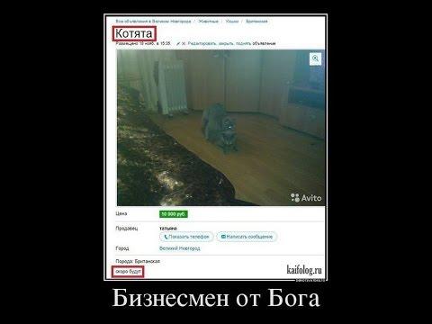 Демотиваторы из соцсетей. Умора)))