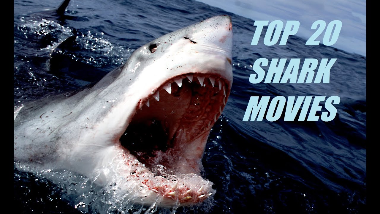 Best Shark Movies