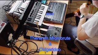 #003 AudioJoy :: Theremin Microbrute Didgeridoo
