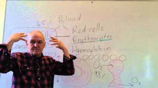 Blood lesson 2, Red blood cells and white cell counts