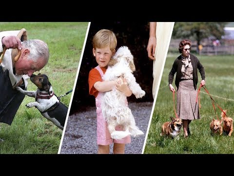 Photos of Queen Elizabeth, Meghan Markle, and More Royal Family Members with Dogs