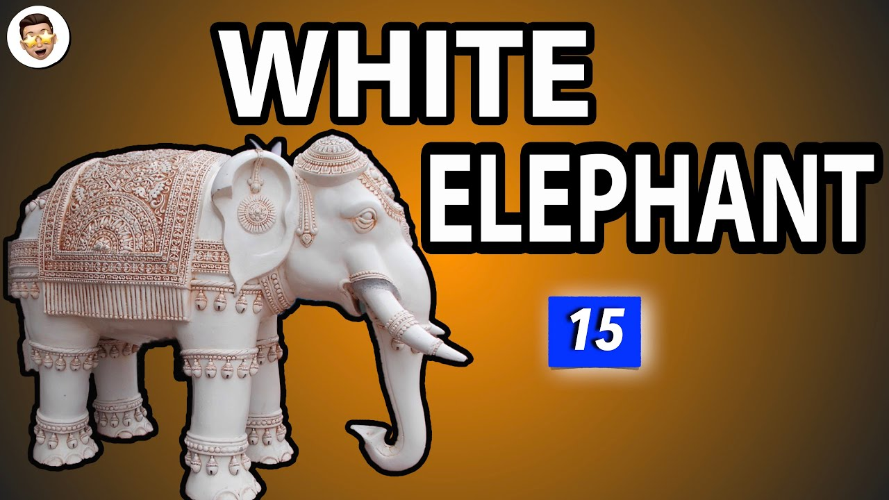 White Elephant Meaning   Most Common English Idioms   20