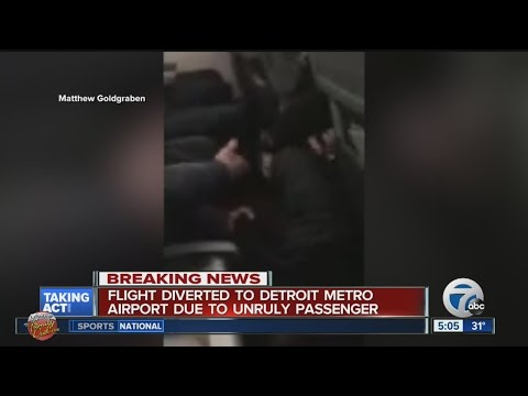 United flight from New York to Chicago diverted to Detroit after woman attacks flight attendant