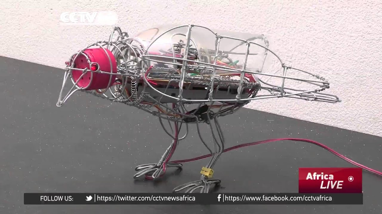 south african artists breath life to innovative wire art youtube rh youtube com electrical wiring parts electrical wiring parts