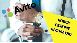 Доступ к резюме на Авито бесплатно