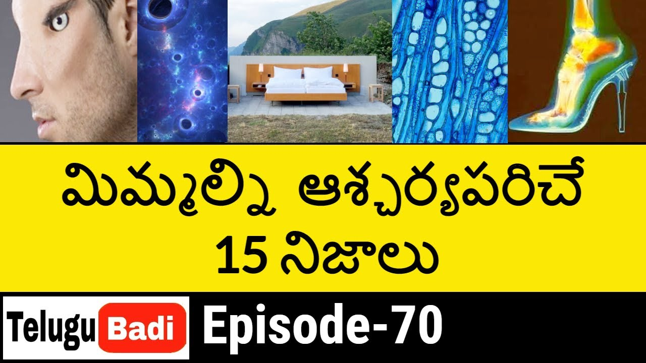 Top 15 Interesting Facts in Telugu Episode 70 | Unknown and Amazing Facts | Telugu Badi