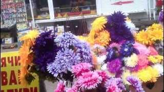 Неувядающие цветы.(Такую на первый взгляд красоту трудно пройти мимо. И всетаки именно в этот период времени это пользуется..., 2013-04-15T06:24:07.000Z)