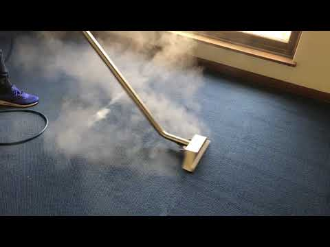 Sydney Wide Carpet Cleaning Service