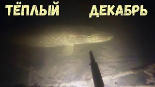 Подводная охота Тёплый декабрь