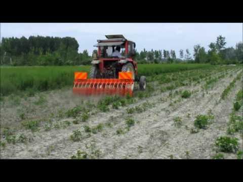 Agri Sav Rompicrosta