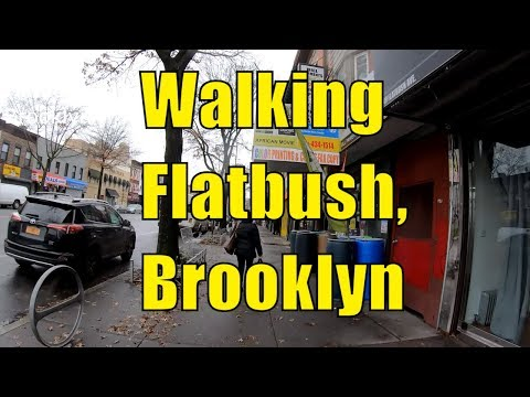 ⁴ᴷ⁶⁰ Walking Flatbush, Brooklyn, NYC : Avenue H, Brooklyn College, Flatbush Avenue to Church Avenue