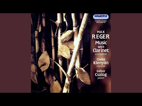 Sonata in f sharp minor for clarinet and piano op.49. no 2 - iii. larghetto mp3