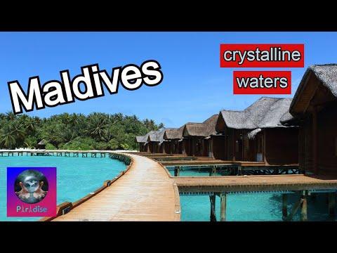 Maldives A Beautiful Place