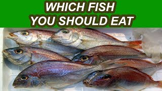 The Best and Worst Fish List To Eat For Your Health in 2018