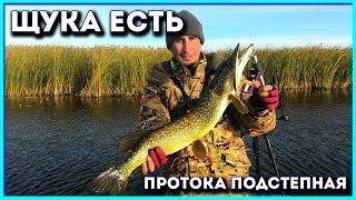 Рыбалка в октябре на щуку.Протока Подстепная.
