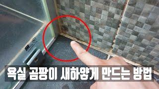 전문가의 욕실 곰팡이 제거 방법, 세제 오남용의 위험성을 알려드립니다 cleaning