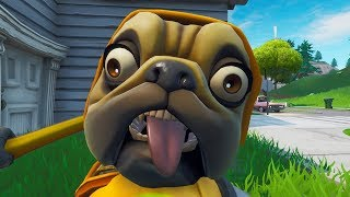 SKIN of the DOGUINIUM MAKING ALL THE DANCES of the GAME (Fortnite)