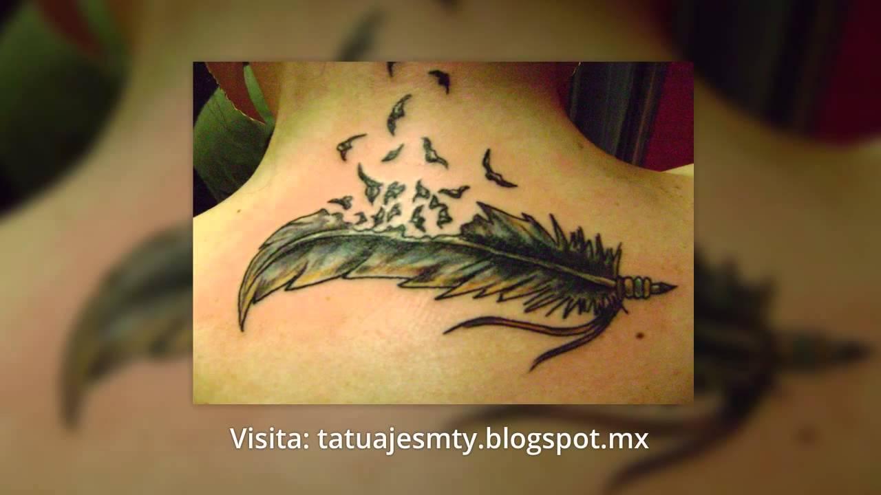 Tatuajes De Plumas Diseños Y Fotos Youtube
