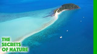 Australia's Greatest Islands - The Secrets of Nature thumbnail