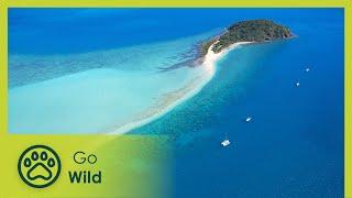 Australia's Greatest Islands - The Secrets of Nature