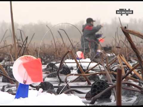 Зимняя ловля раков камнями, куда они перемещаются