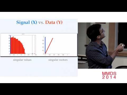 Optimal Shrinkage of Fast Singular Values; Matan Gavish
