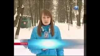 Вологда. Жители в страхе от бродячих собак