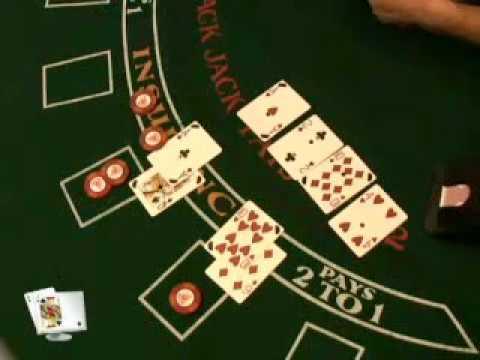 Albany ga gambling ring