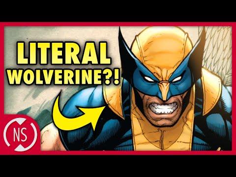 REAL Origin of WOLVERINE! (X-Men Week)    Comic Misconceptions    NerdSync