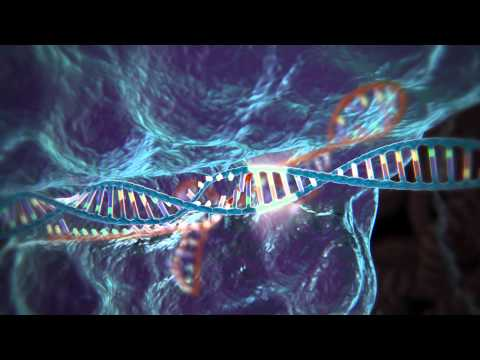 Genome Editing with CRISPR-Cas9