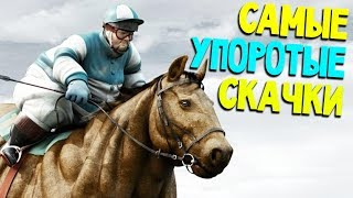 видео Игры про Лошадей