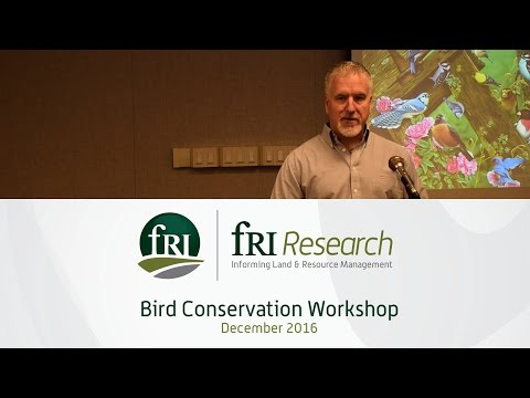 Questions for Migratory Bird Mangement on Forested Landscapes in Alberta | Darren Sleep