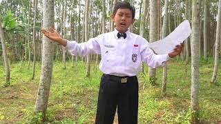 Video FL2N 2018 Lomba Baca Puisi Surat dari Ibu Karya Asrul Sani GALANG ADI BUANA SD UNGGULAN AL YA'LU download MP3, 3GP, MP4, WEBM, AVI, FLV September 2018